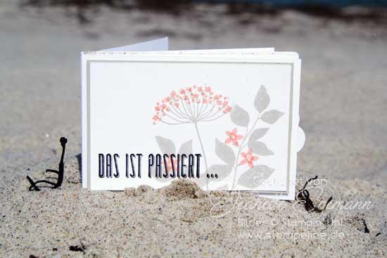 minialbum-summer-silhouettes