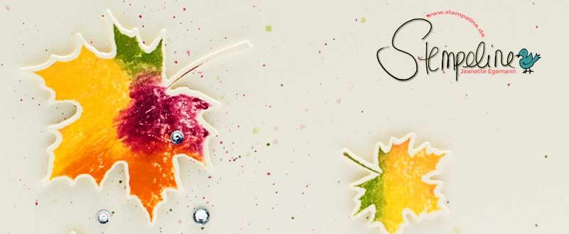 Stempelset Jahr voller Farben Stampin' Up!
