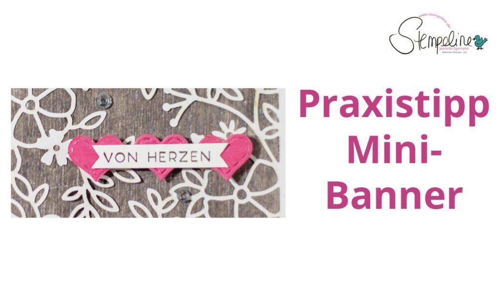 Praxistipp Mini-Banner Vorschaubild