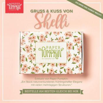 Shellis Paper Pumpkin Kit